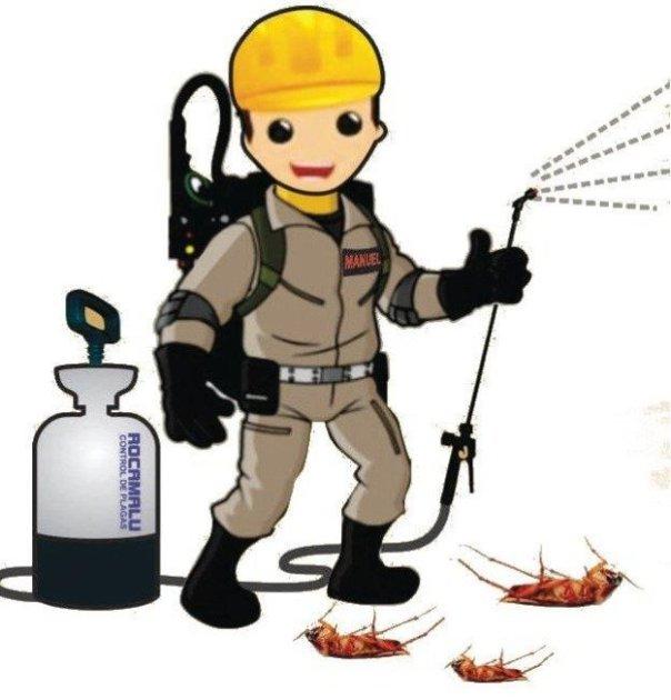شركة رش مبيدات ببريدة