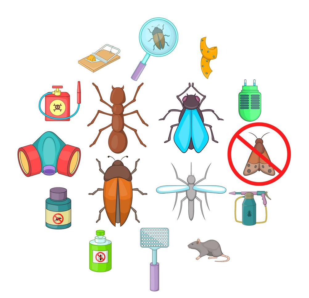 شركة مكافحة حشرات بعنيزة