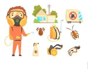 شركة رش مبيدات بنجران